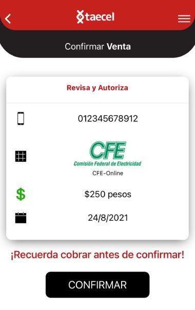 Ingresa la referencia de pago y el importe a pagar