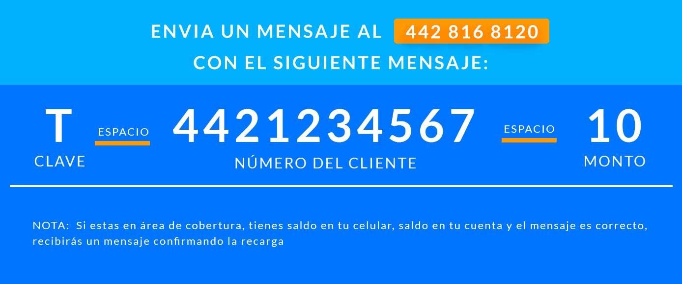 Recargas electrónicas y pago de servicios por sms